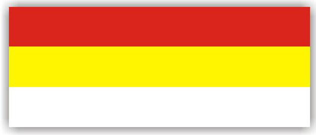 flaga Gogolina.jpeg