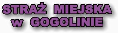 straz_logo_2.jpeg
