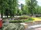 Kwitnące Opolskie_Kamień Śl.1.jpeg